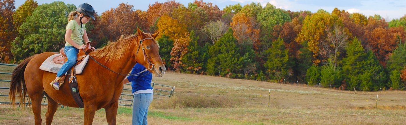 fall-horse-slide