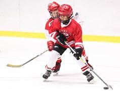 hockey | coyotehill.org