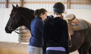 working with horse | coyotehill.org