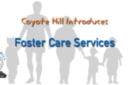 Foster Care Services