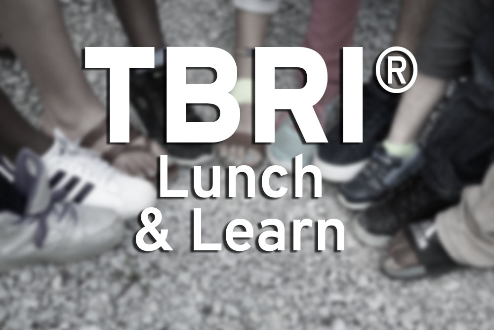 TBRI® Lunch and Learn