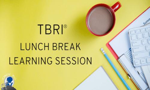 TBRI® Lunch Break Learning Session